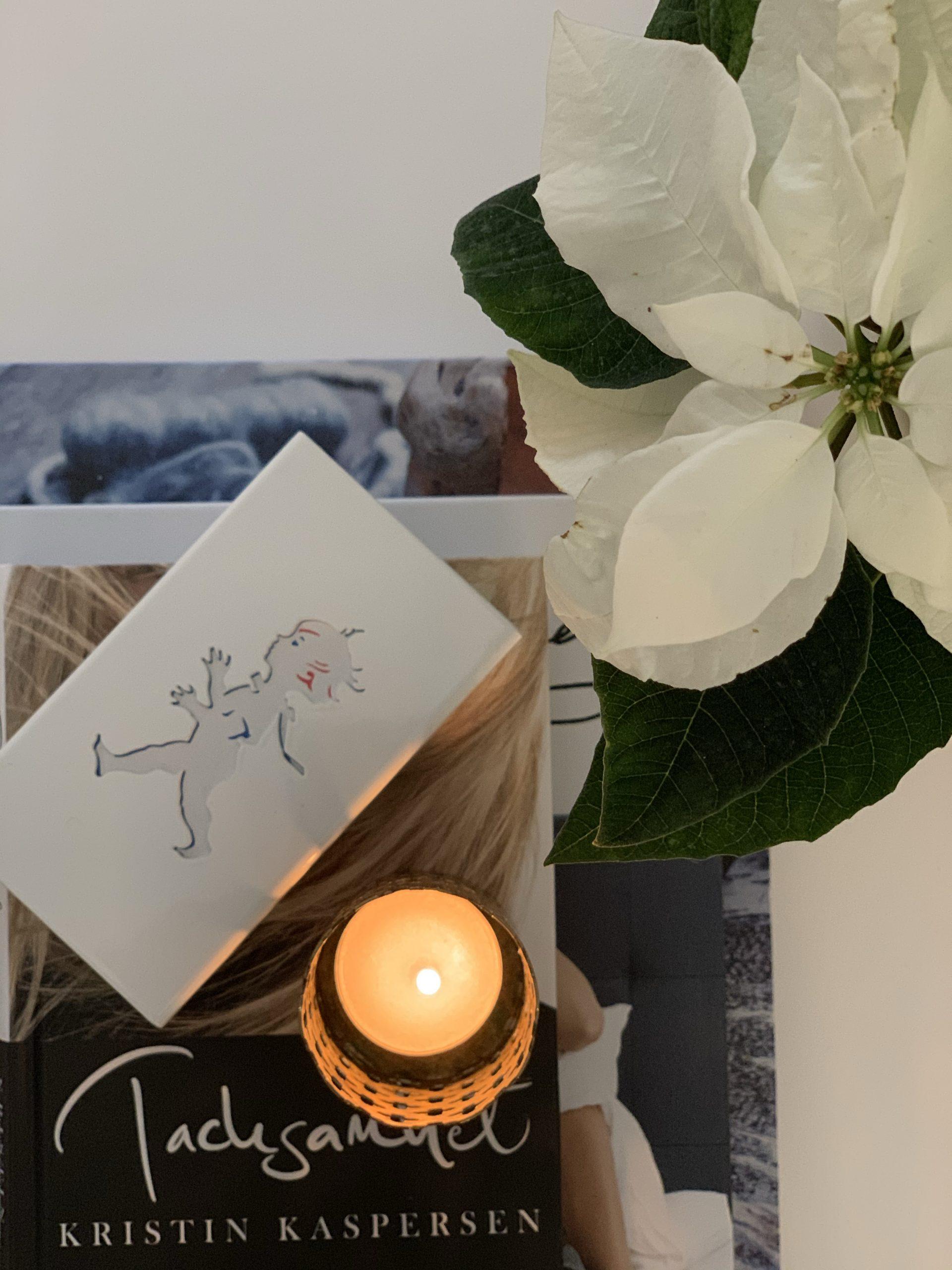Bild på vit julstjärna, tändsticksask, klöverljusstake och böcker