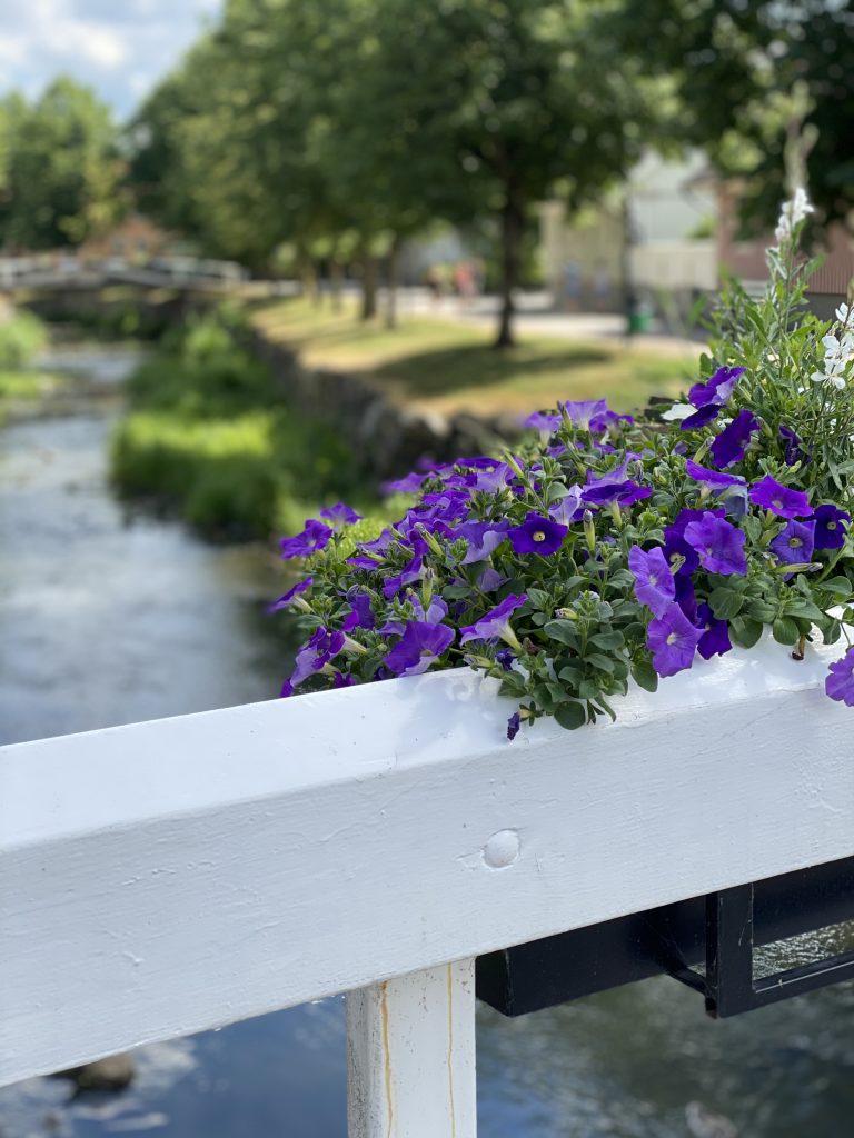 Blommor på bro